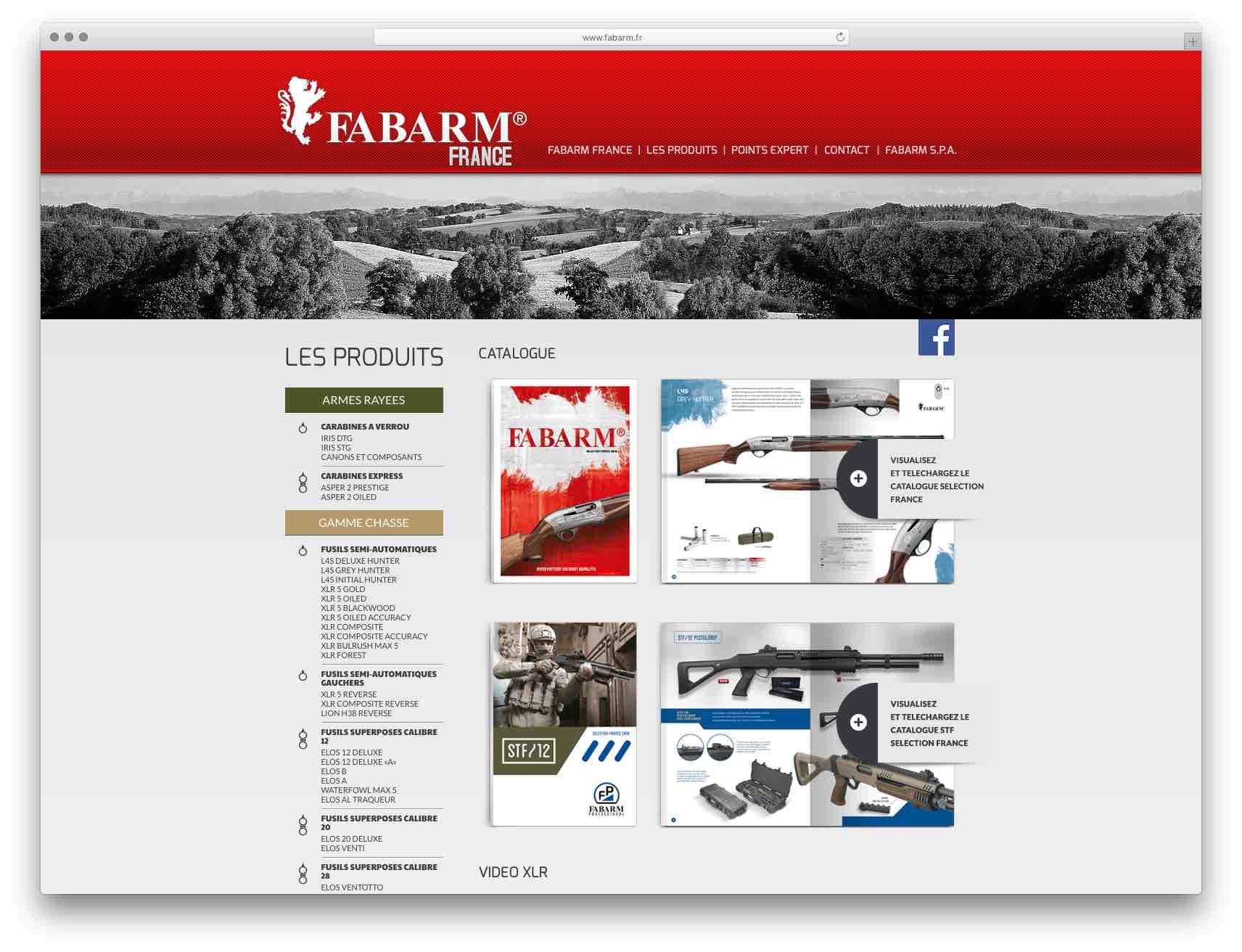 creazione siti web brescia - sito web fabarm france