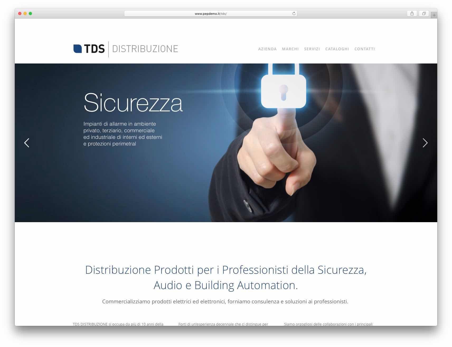 Creazione Siti Web Brescia - Sito Web Tds Distribuzione