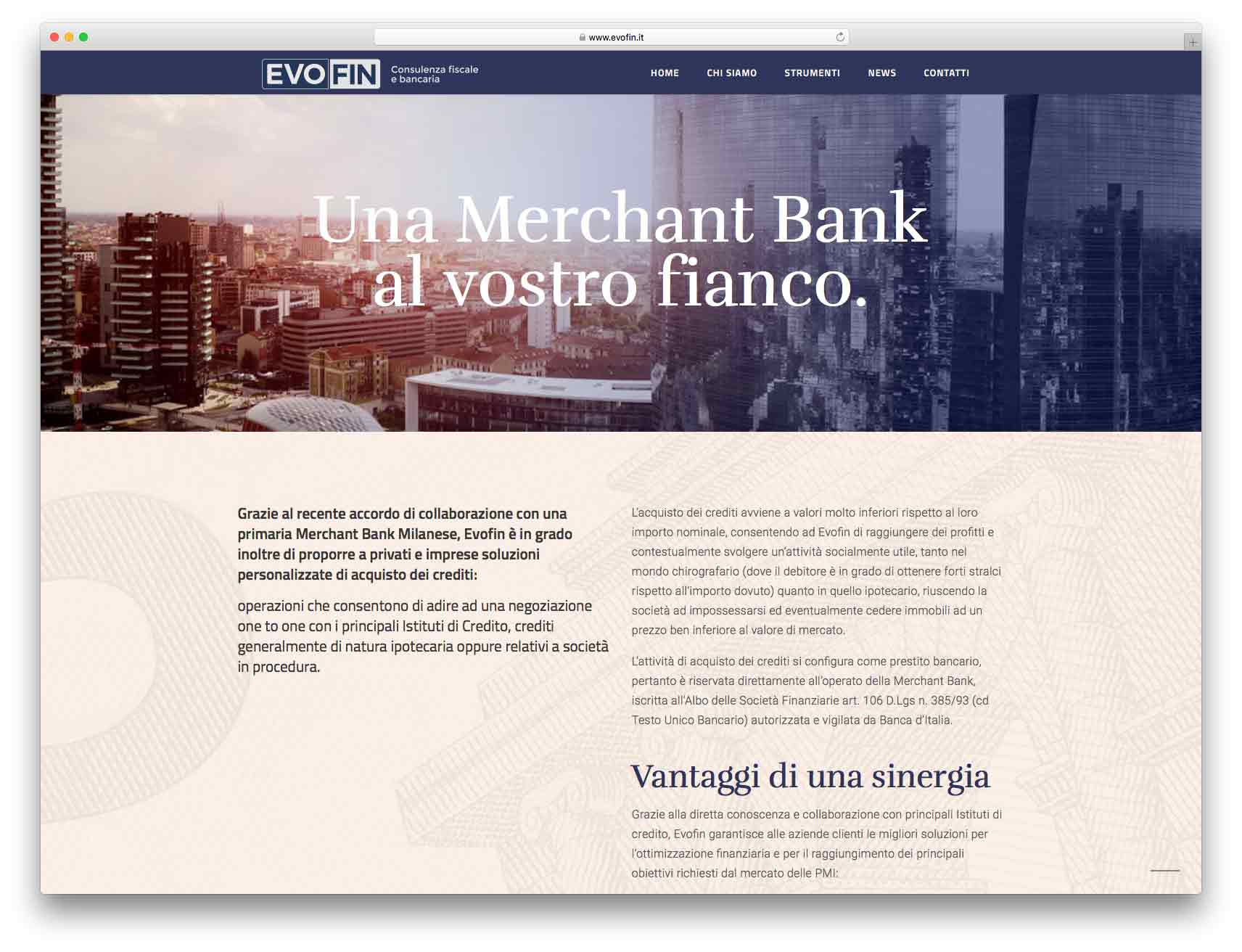 creazione siti web brescia - Agenzia P - sito web Evofin