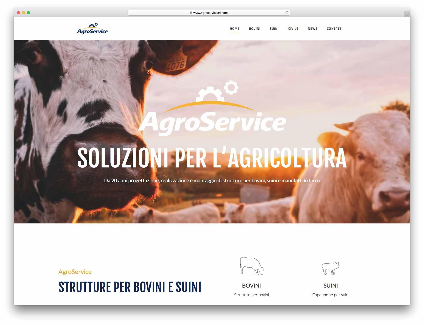 creazione siti web brescia - Agenzia P - sito web Agroservice